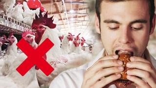 Настоящее мясо без убийства животных! - Полная перезагрузка