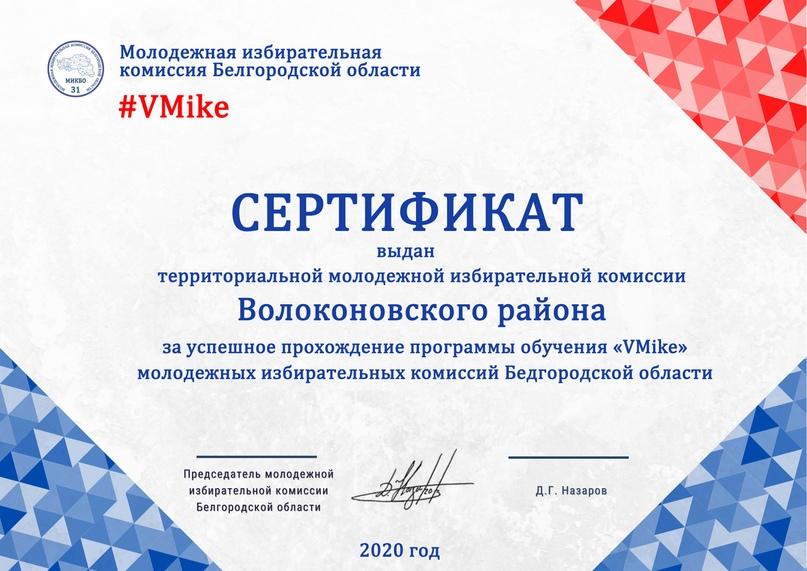 Итоги программы обучения молодежных избирательных комиссий Белгородской области «VMike», изображение №9