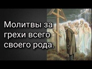 Молитвы за грехи своего рода. Отрок Вячеслав.