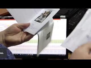 Какие у вас документы, или Как Кот Мостик на почту ходил