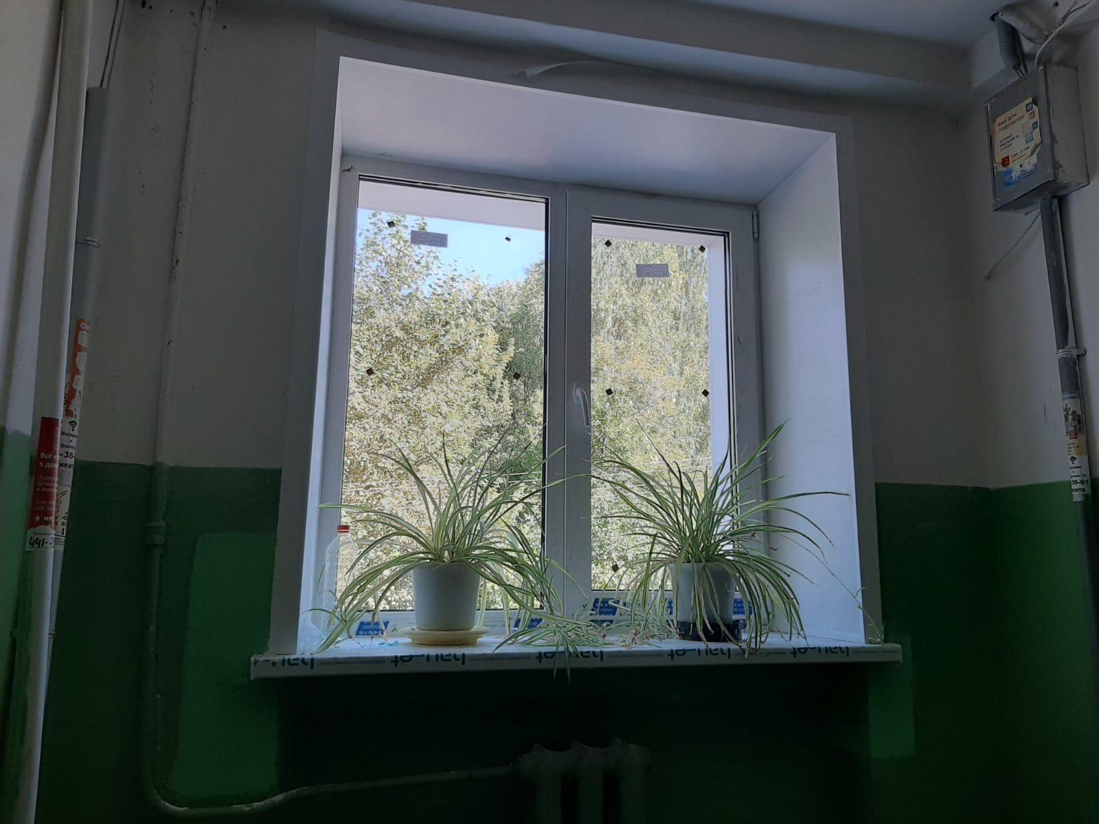 Улица Широнинцев дом 15 установка пластиковых окон