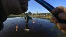 Сумасшедший карась бьет по ногам Рыбалка с берега на поплавок