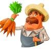 Агроном.Эксперт - сад и огород, полезные советы