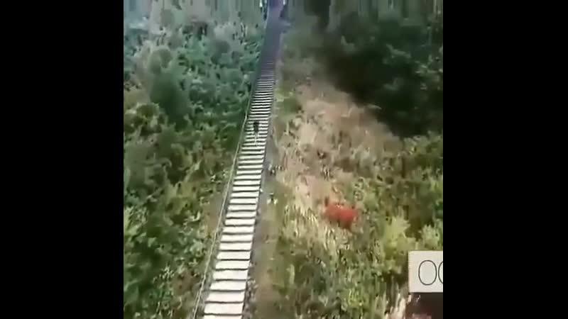 Бег❗ Подъём в гору по лестнице