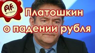 Николай Платошкин о падении рубля