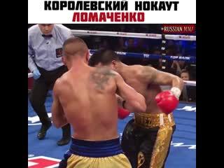 Королевский нокаут от Василия Ломаченко!