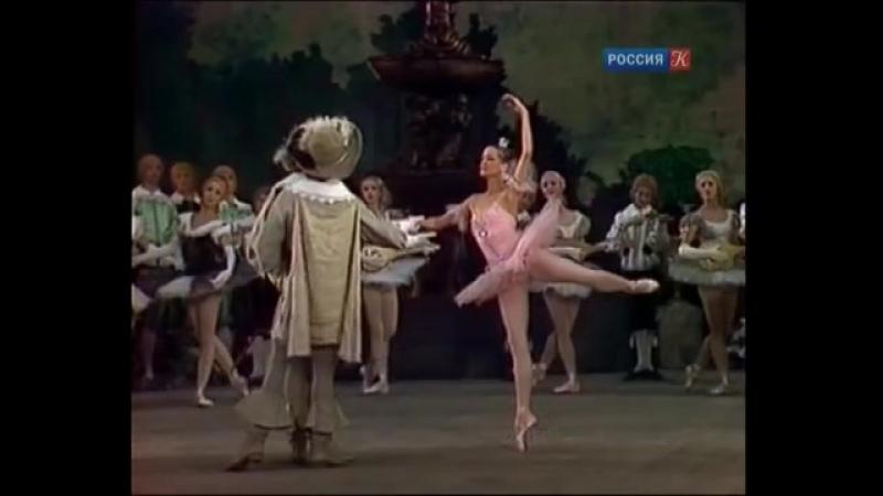 Абсолютный слух о балетных терминах