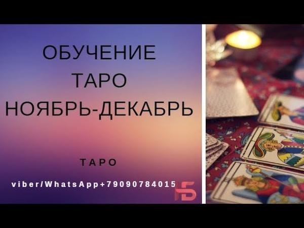 Обучение ТАРО октябрь ноябрь декабрь картытаро