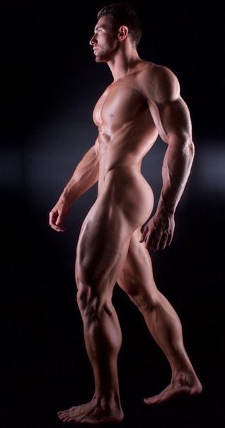 Naked bearded man image photo