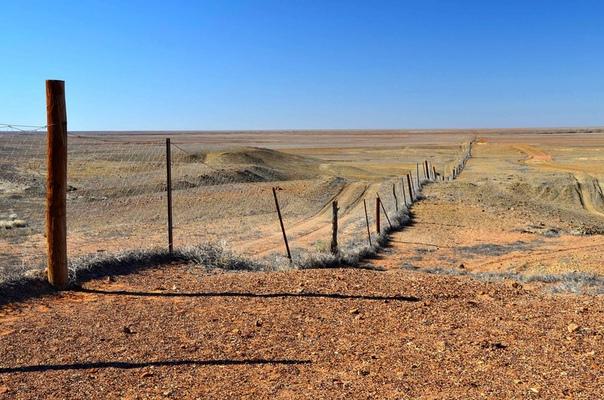 Самая длинная прямая дорога в мире: шоссе Эйр, Австралия