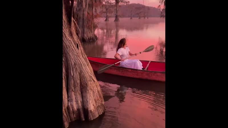 Озеро Каддо Расположено на реке Ред Ривер в западной части прихода Каддо штата Луизиана Особенность этого озера в том что жив