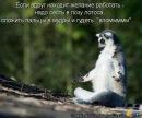 Личный фотоальбом Татьяны Меньшиковой