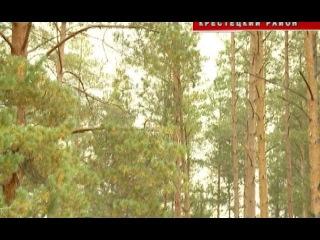 16 09 2015 В третье воскресенье сентября в России традиционно отмечается день работников леса
