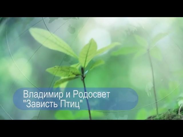 Владимир и Родосвет - Зависть Птиц (rodosvet-video.ru)