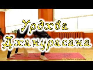 Йога Асаны - Урдхва Дханурасана (Мостик)