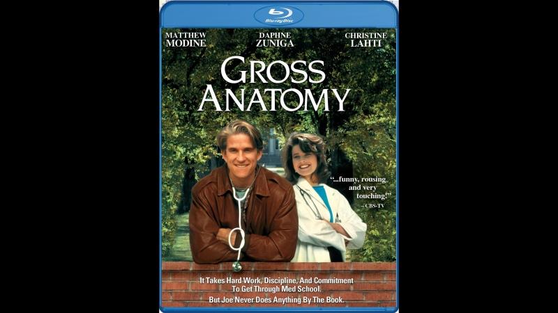 Курс анатомии Большая Медицина Gross Anatomy 1989 Михалёв