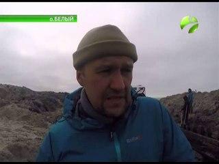 Грустные находки на о. Белом. Арктическая экспедиция продолжается