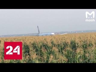 Самолет затрясло, запахло гарью: очевидец рассказал о жесткой посадке в Жуковском - Россия 24