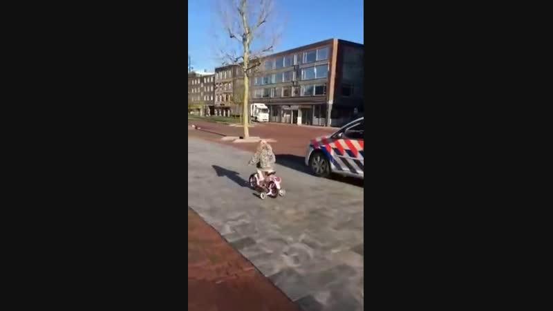 Датский полицейский на авто и маленькая девочка на велосипеде