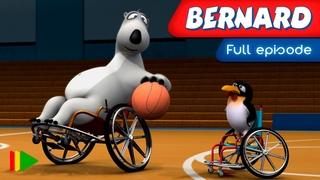 Bernard Bear - 147 - Wheelchair Basketball