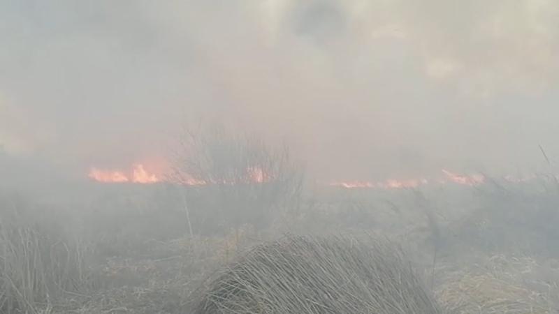 Большой ландшафтный пожар в Кургане 2021 05 03
