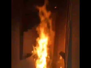 Тупые школьницы сожгли дом!