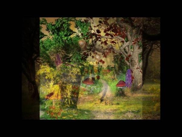 Рольф Ловланд Таинственный лес