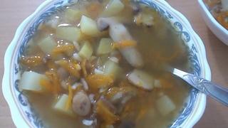 Грибной суп с рисом. Бабья Доля.