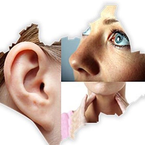 зависимости площади картинки фото глаза уши рот сам срубит баньку
