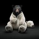 Фотоальбом Сергея Гоголя