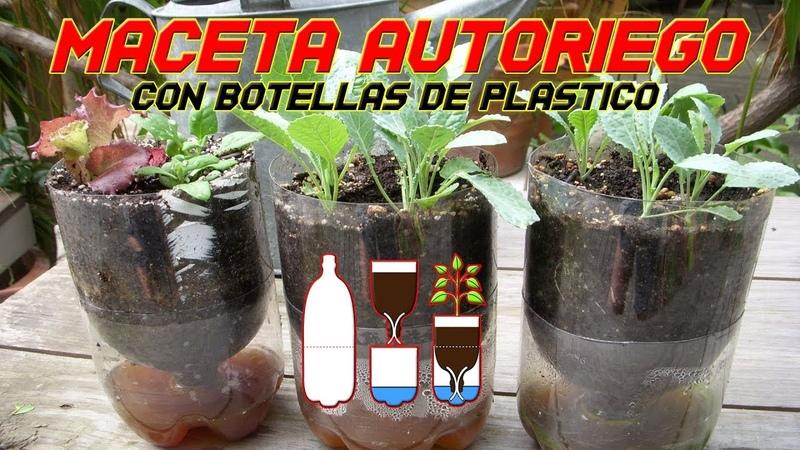 Maceta Autorriego Riego Automático Reciclar botella de Plástico PET Cultivo Paso a Paso