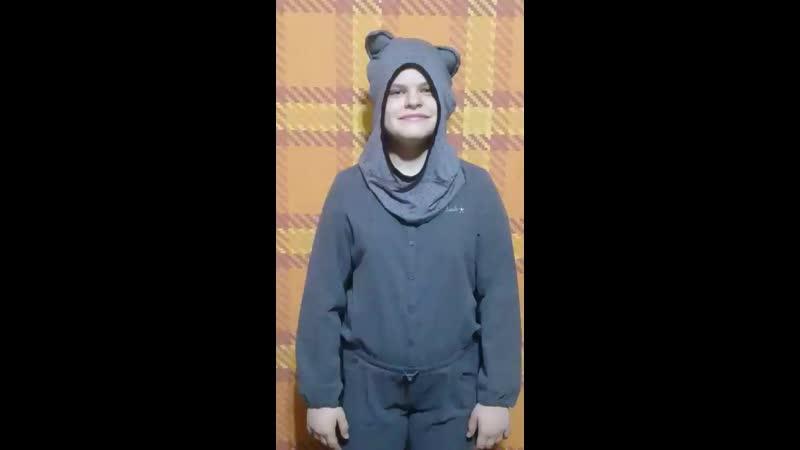 Дневник кота убийцы Энн Файн Геленджик