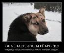 Личный фотоальбом Сани Чеснокова