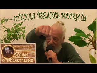 Дмитрий Гайдук - ОТКУДА ВЗЯЛИСЬ МОСКИТЫ