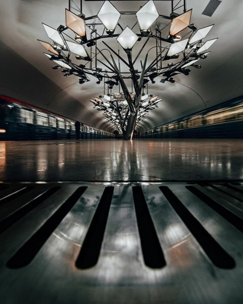 Дизайнерские деревья-люстры на станции «Тропарёво»...