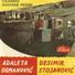 Desimir stojanovic