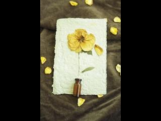 Бумага из лепестков роз