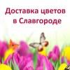 Доставка цветов в Славгороде