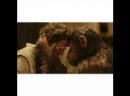 Dawn of the Planet of the Apes / Рассвет планеты обезьян