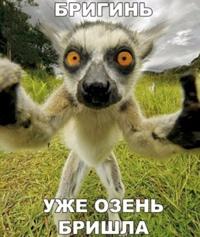 Анна Баранова фото №20
