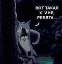 Персональный фотоальбом Сани Шелемова