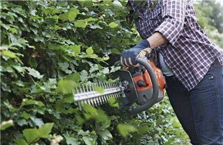 Подготовьте свой сад к весне, изображение №3