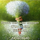 Фотоальбом Светланы Васюниной
