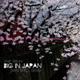 Ane Brun - Big In Japan (Ivan Spell Remix)