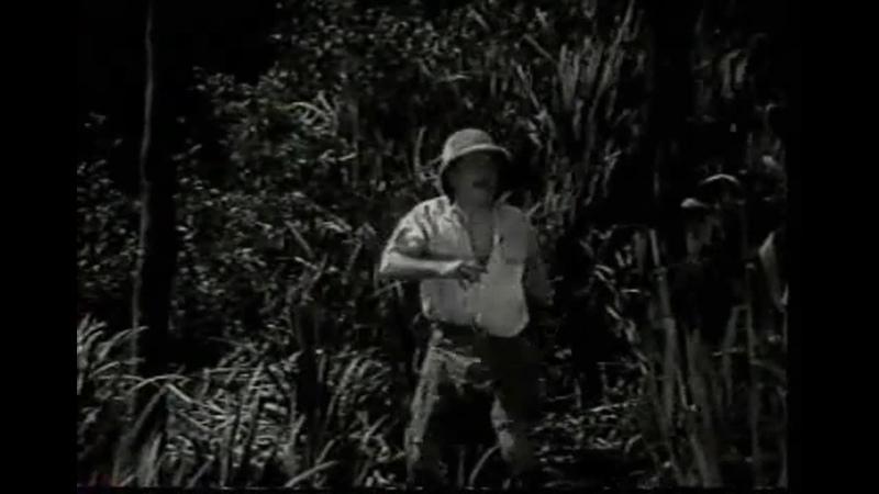 Тарзан Тигр Tarzan the Tiger 1929 14