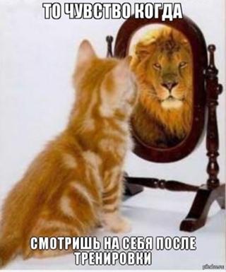 Сергей Сергеев фотография #3
