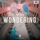 Paul Bujor - Wondering