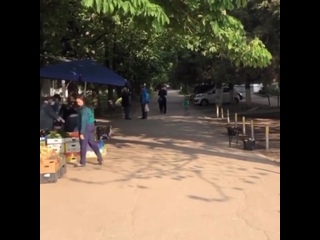 Два простых парня приехали вчера днем на ул. Толбухина и бесплатно раздали жителям Славянского мкр. несколько коробок масок.