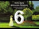 6. Geplänkel перестрелка/Brennendes Geheimnis/S. Zweig