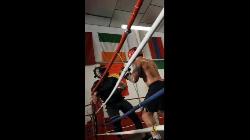 Видео от Georgian Fighters